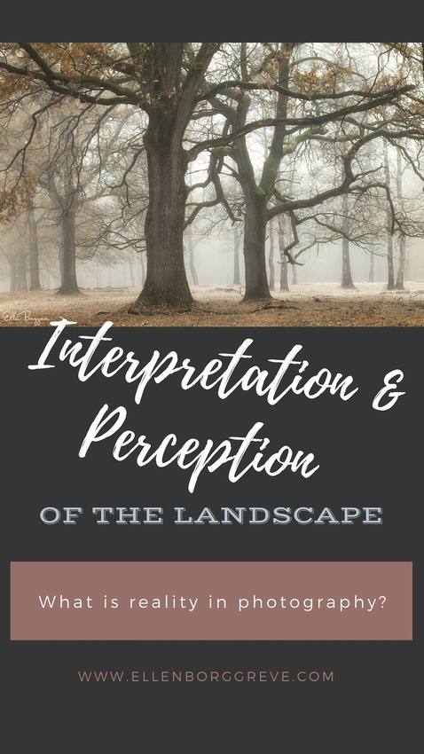 Interpretation and Perception of the Landscape