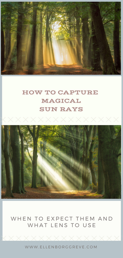 How To Capture Magical Sun Rays