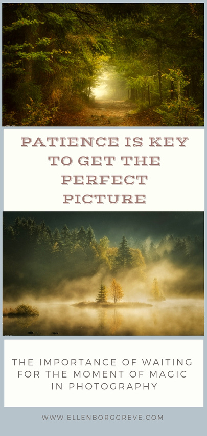 How Patience Is Essential To Taking Better Pictures