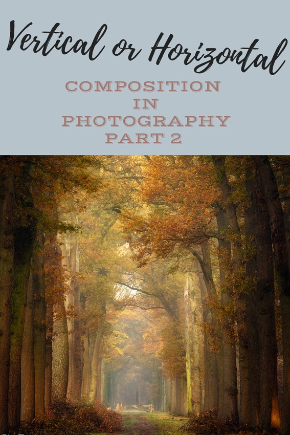 Photographic Composition: Vertical or Horizontal Formats