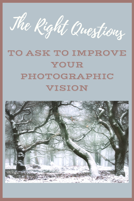 Questions To Help You Figure Out Your Personal Style and Vision in Photography
