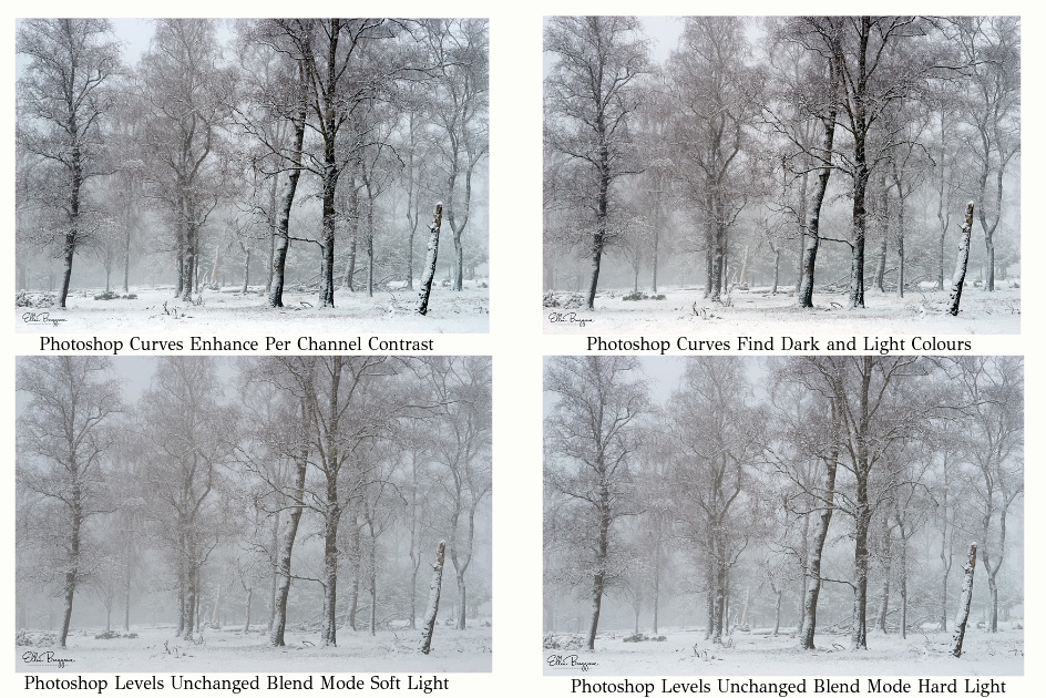 Contrast In Photography Article