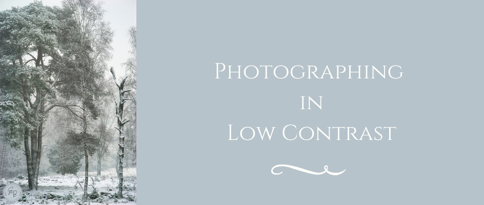 Low Contrast Photography Article