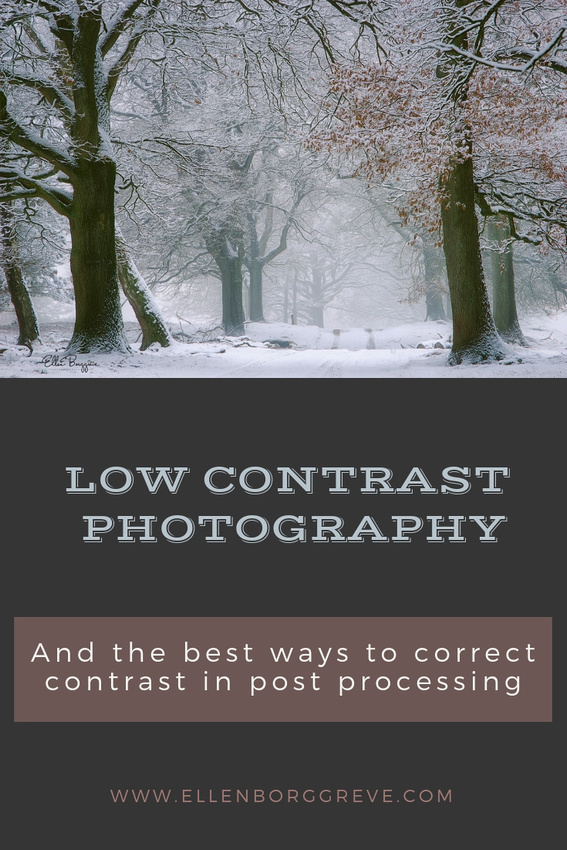 Low Contrast Photography And How To Correct It In Post-Processing