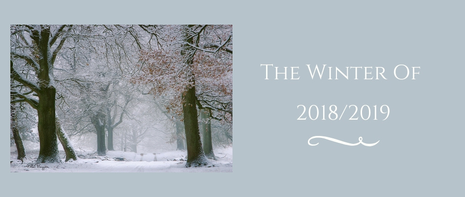 Winter Photography 2018/2019