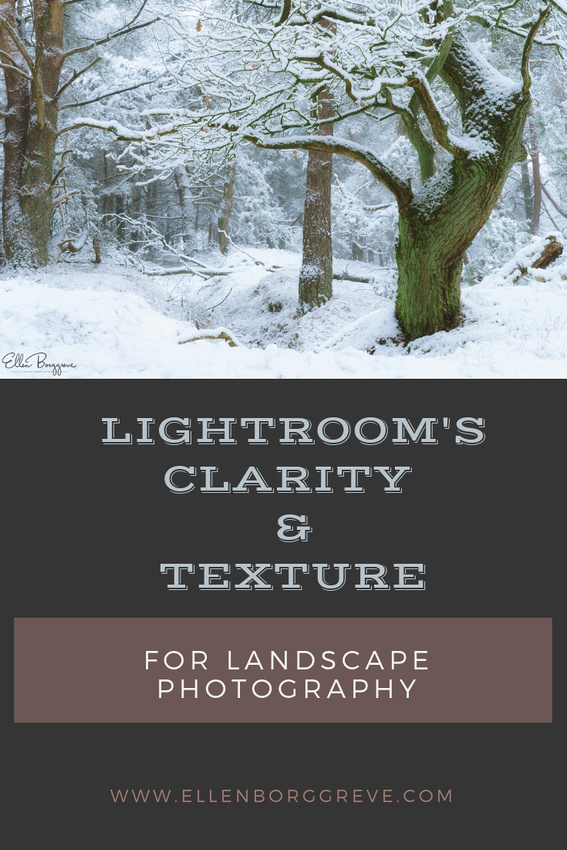 Lightroom's Clarity and Texture For Landscape Photography