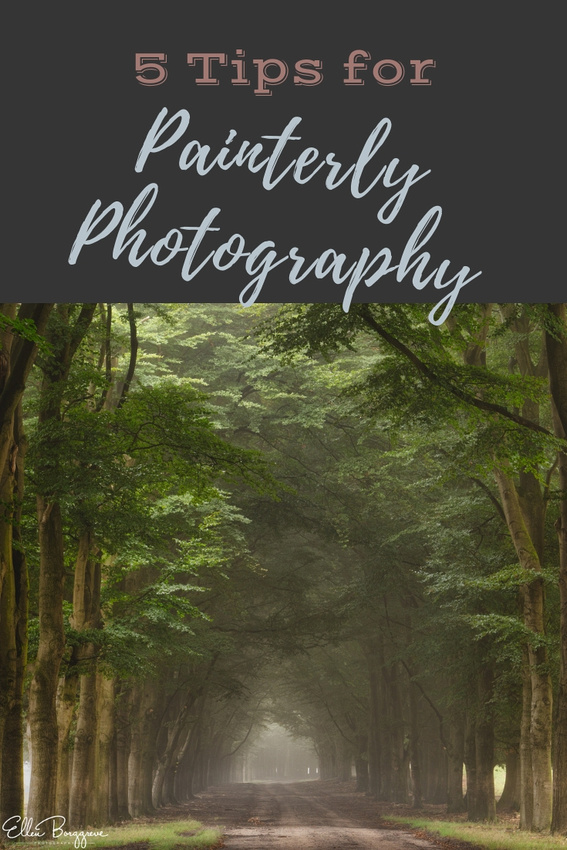 5 Tips For Painterly Photography