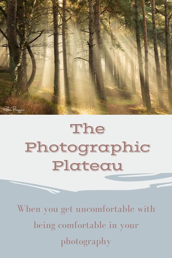 The Photographic Plateau