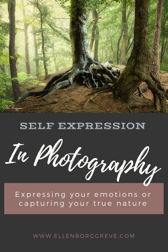 Expressing Yourself In Photography