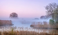 Dreamy picture of misty sunrise at the riverside