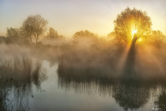 Sunbeams over misty waters