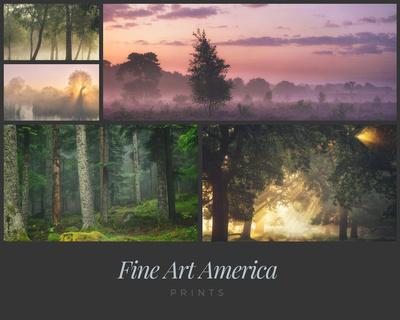 Fine Art America Prints
