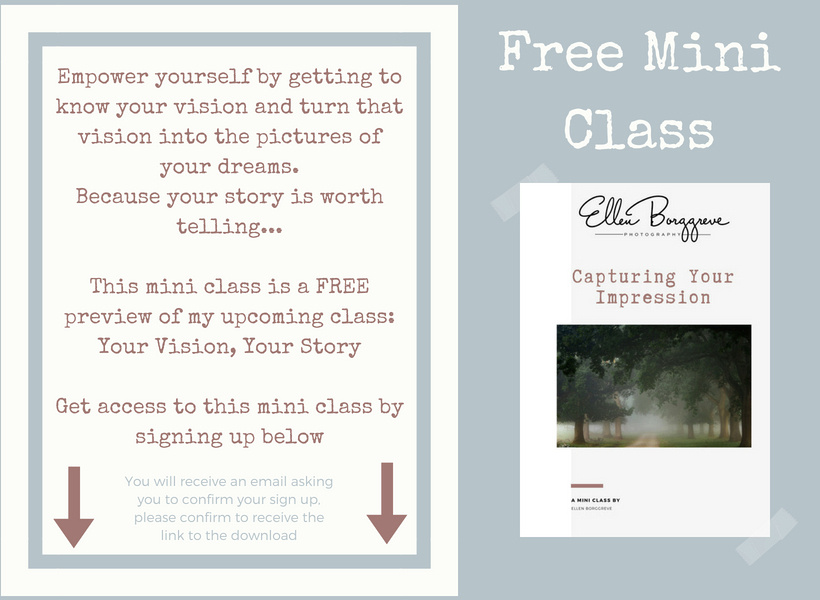 Mini Class Caturing Your Vision